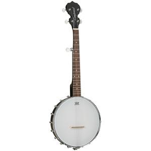 Tanglewood TWBT Travel Banjo