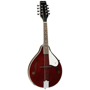 After the huge revival in Folk music in recent years Tanglewood drew from their experience to offer a range of Mandolins that cater for the beginner up to the professional player. Again as you would expect from Tanglewood they offer bang for your buck making them the stand out choice.