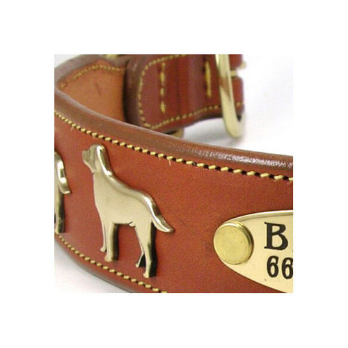 Dog Collar Large Breeds
