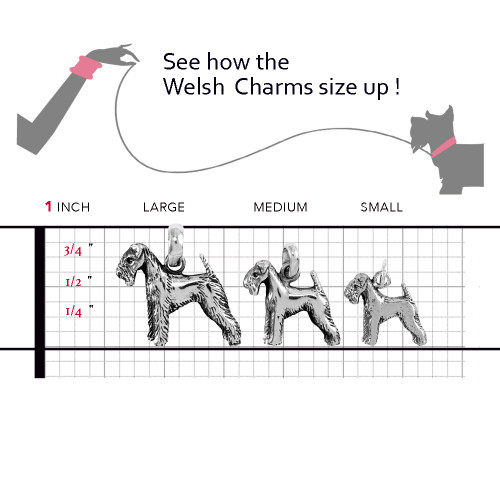 Welsh Terrier Sizing