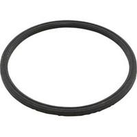 Compupool Products USA Inc Gasket, Esr, Blue - GRC/ESRGASKET