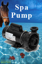 discount-spa-pumps-hottub-outpost.jpg