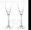 Spa Champagne Flutes Glasses Unbreakable 2-Pack Tritan
