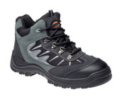 Dickies Storm Super Safety Hiker WD102