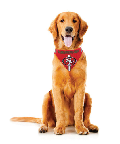 Atlanta Falcons Pet Bandanna Size XS