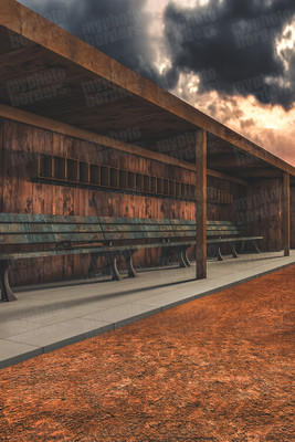 DIGITAL BACKGROUND -  BASEBALL DUGOUT II
