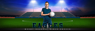 PANORAMIC SPORTS BANNER TEMPLATE - HOME TURF - SOCCER - CUSTOM LAYERED PHOTOSHOP SPORTS TEMPLATE