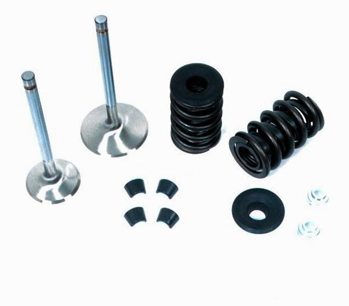 Dart LS Pro 1 250cc Head Parts Kit 28422200