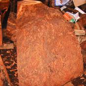 2-redwoodburl2-thumb.jpg