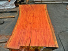 "Red Eucalyptus Slab GWS-809 3¼""x40""-51""x83"""