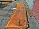 "Blonde Eucalyptus Slab GWS-818 3¼""x28""-33""x120"""