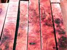 Amboyna Burl Pen Blanks (¾ x ¾ x 5)