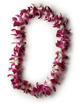 One (1) Single Dendrobium Orchid Leis