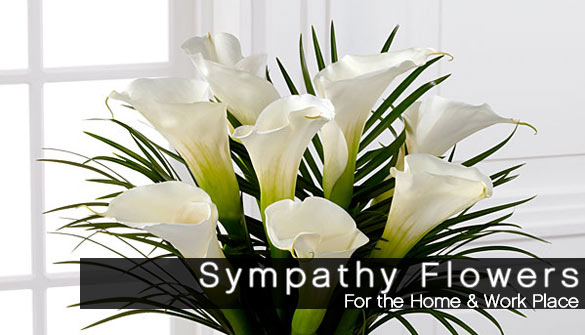 Flowers for the home or office