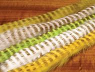 "Barred Magnum Rabbit Zonker Strips (1/4"")"