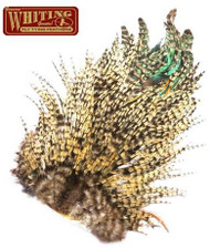 Whiting 4Bs Rooster Saddle