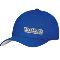 Throttle Threads Blue Curved PU Cap