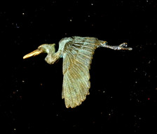 """Cavin Richie design flying heron pin, cast in lightweight artist's bronze, 1.1"""" X 1.6 """". Casting was created from one of Cavin's original shed-elk antler or  woolly mammoth ivory carvings, to give the finished product more natural detail than is possible with a wax carving. Cast in the USA and hand finished in Washington State."""