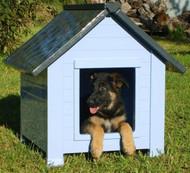 RigiBuilt Insulated Blue Bunk House (Medium)