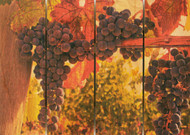Old Vines Wall Art