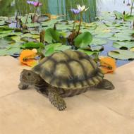 "Gilbert, the Box Turtle Statue 7""W"