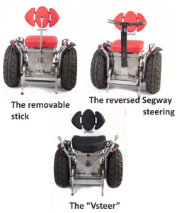 suigeneris-3-models.jpg