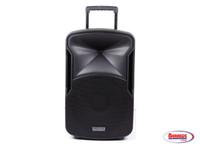 76585 Edison Professional Speaker W/Mic