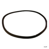 Commercial | Pentair | EQ SERIES® | Gasket, EQ lid | 350166