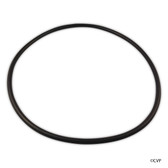 Clearwater | LM3 CELL ORING | W150181
