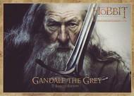 2012 Dennys Hobbit: An Unexpected Journey Set (16)