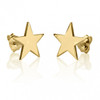 Gold Plated Star Stud Earrings