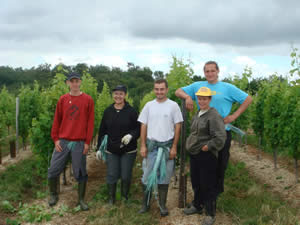 The team taking care of the vines in 2007