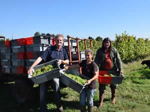 15th harvest together, Gavin, Nelly, Daniel Ramone