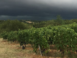 First night of the harvest and a storm