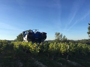 The machine harvester