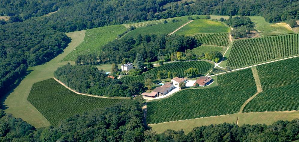 chateau-with-vines-rg.jpg