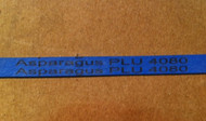 Asparagus Rubber Band Blue w/PLU #4080