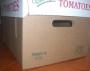 Kraft 25 lb Tomato Box Bottom Only - Bundle of 25