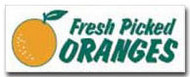 Fresh Oranges banner 8' x 3'