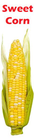 Banner Vertical Sweet Corn