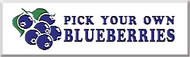 Pick Your Own Blueberries banner 8' x 3'