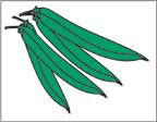 Marketeer Sign - Green Peas