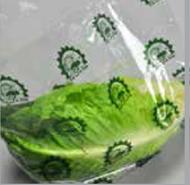 Super Clear Vented Lettuce bag - Medium
