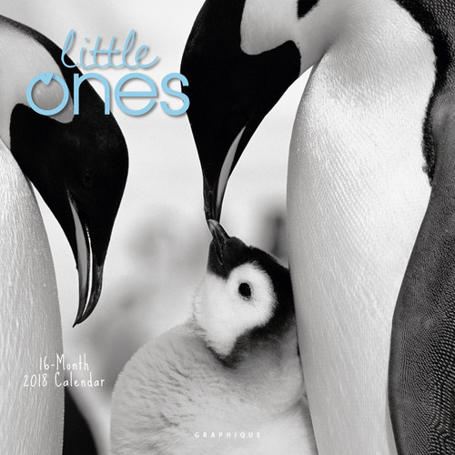 2018 Little Ones Calendar, Wall Calendar