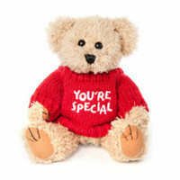 "Message Bear - ""Your Special"""