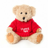 "Message Bear - ""I Love You"""