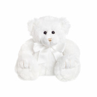 White Teddy Bear Bobby