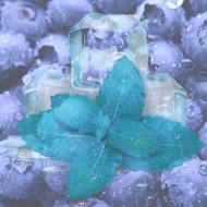 Blueberry Menthol Liquid