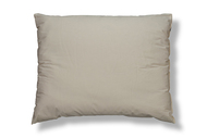 Organic cover wool pillow.
