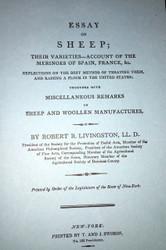 Essay on Sheep